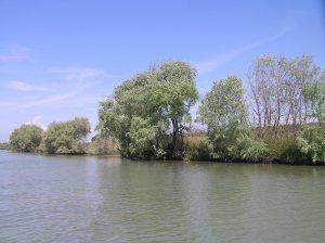 Sul fiume Tevere (MG. Villani)