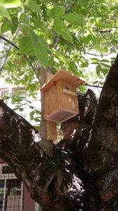 Casetta nido progetto Oasi a scuola